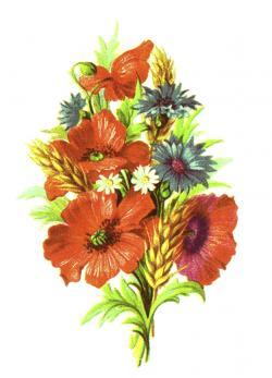 Vintage Flower clipart wildflower bouquet