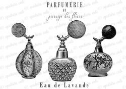 French clipart perfume bottle