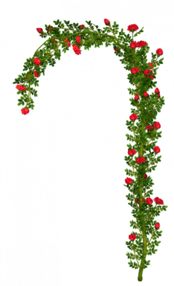 Arch clipart flower arch