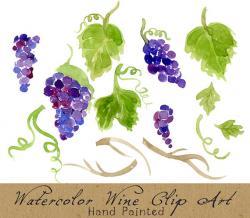 Vineyard clipart english