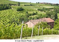 Vineyard clipart land