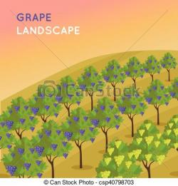 Vineyard clipart plantation