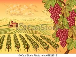 Vineyard clipart valley