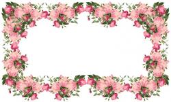 Pink Rose clipart borders vintage color