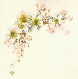 Vintage Flower clipart marriage flower