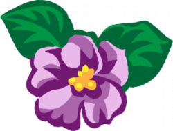 Violet clipart