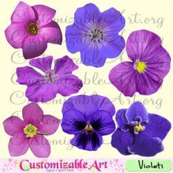 Petunia clipart violet flower