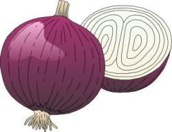 Onion clipart vegatable