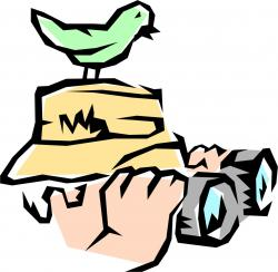 Vireo clipart celebrity