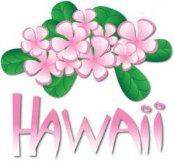 Plumeria clipart hawaiian island