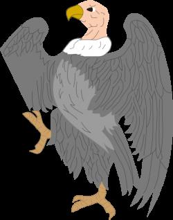 Condor clipart bird