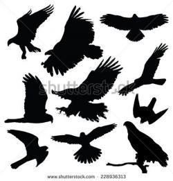 Raven clipart heraldic