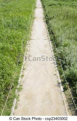 Walkway clipart straight path