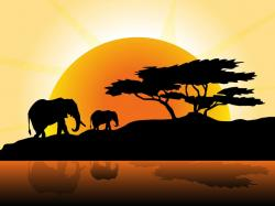 Wildlife clipart africa sunset
