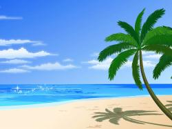 Sandy Beach clipart beach background