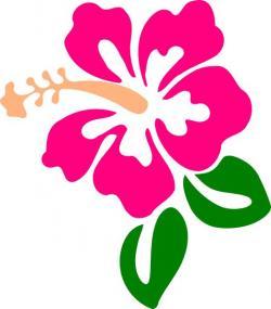 Drawn hibiscus pink hibiscus