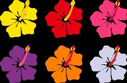 Tropics clipart colorful flower