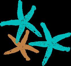 Drawn coral blue starfish