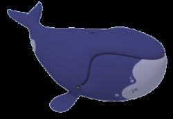 Orca clipart octonauts