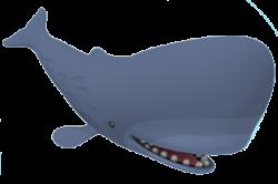 Blue Whale clipart octonauts