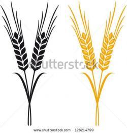 Malt clipart wheat ear