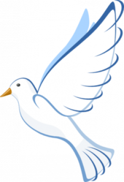 White Dove clipart