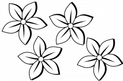 Drawn elower black and white