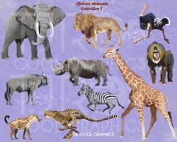 Wildebeest clipart african animal