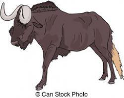 Wildebeest clipart