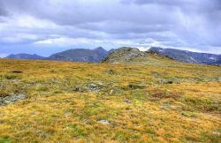 Tundra clipart wilderness
