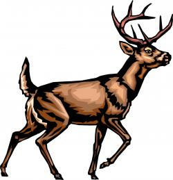 Stag clipart big buck