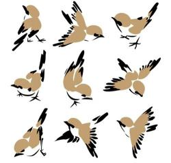 Flock Of Birds clipart wildlife