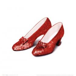 Wizard Of Oz clipart red slipper