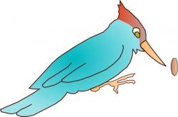 Realistic clipart woodpecker