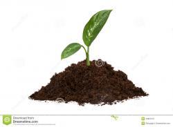 Soil clipart pile soil