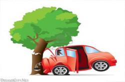 Tree clipart car crash