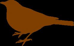 Wren clipart free bird