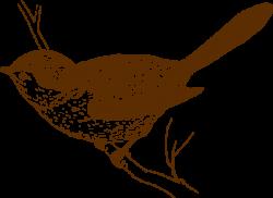 Wren clipart
