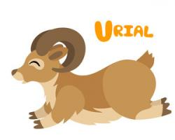 Yak clipart urial