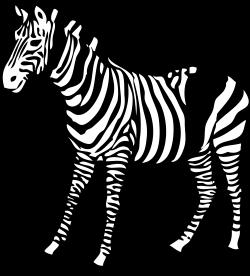 Pice clipart zebra