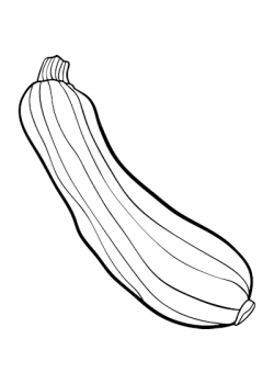 Zucchini clipart black and white