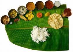 Zucchini clipart tamil